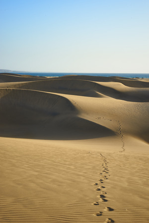 hotness: Footsteps on sandy dunes in desert with natural colors