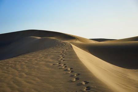 자연 색상과 사막에서 모래 언덕에 발자취