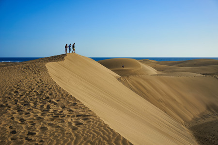 hotness: Hiking people on sandy and wavy dunes with stylish forms in a wide desert under blue sky