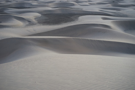 hotness: Sandy dunes in desert at sunrise in the early morning Stock Photo