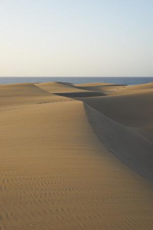 desierto: las dunas de arena en el desierto de dunas de arena con formas onduladas y redondas en un amplio desierto bajo el cielo azul