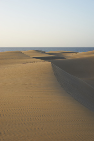 desert: Sandy dunes in desert Sandy dunes with wavy and round forms in a wide desert under blue sky Stock Photo
