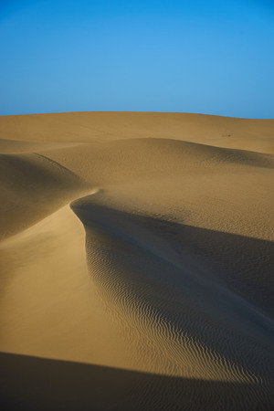 hotness: Sandy dunes in desert Sandy dunes with wavy and round forms in a wide desert under blue sky Stock Photo