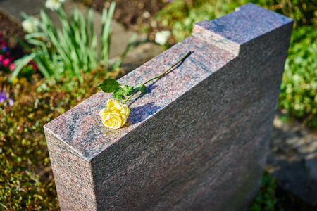 gravestone: grief at on cemetery  withered yellow rose on gravestone