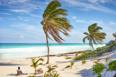 Untouched paradise under marvelous coconuttrees  Tropical beach of Tulum in Mexico  Summer vacation at caribbeans