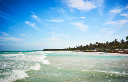 Tropical beach of Tulum in Mexico  Untouched paradise under marvelous coconuttrees  Summer vacation in caribbeans