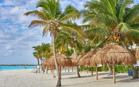So called Turtle Beach Akumal in Mexico  Caribbean vacation at mexican tropical beach at Quintana Roo