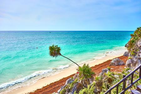 Caribbean coast of Mexico - Quintana Roo - Cancun - Riviera Maya 写真素材