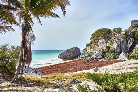 Ruins of Tulum / Caribbean coast of Mexico - Quintana Roo - Cancun - Riviera Maya 写真素材