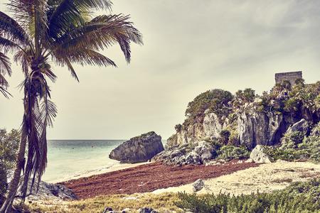 playa: Ruins of Tulum  Caribbean coast of Mexico - Quintana Roo - Cancun - Riviera Maya