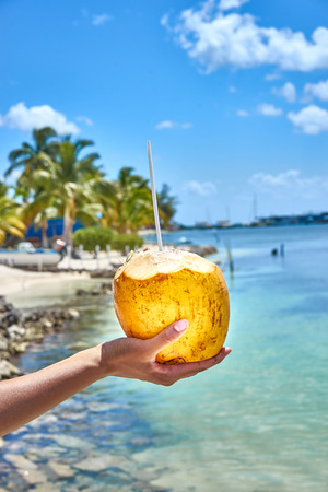 Isolated on a white background. Stock photography Fresh coconut drink. Isolated on a white background