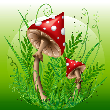 inedible: Mushrooms in the grass