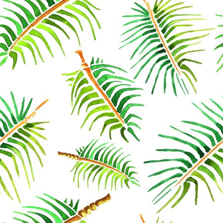 folha: Vector aguarela palmeira folha fundo sem emenda.