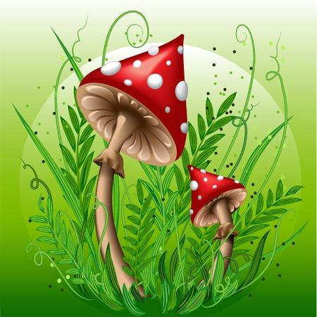 inedible: Red mushrooms in the green grass.