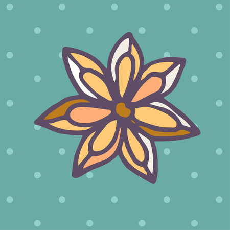 star anise: Vector flat Icon of star anise. Vector illustration.
