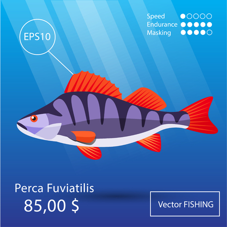raptorial: Vector flat  perch icon. Tropical fish. Eps10