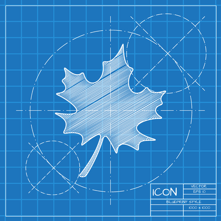 maple leaf icon: Vector blueprint maple leaf icon . Engineer and architect background.