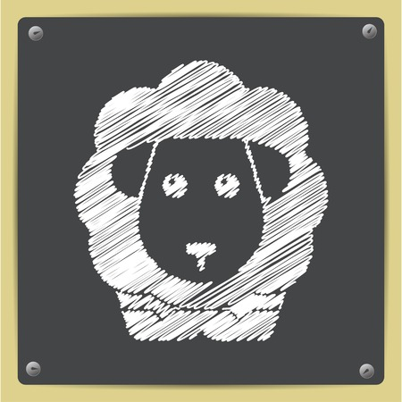 pelage: Vector chalk drawn in sketch style sheep icon on school blackboard