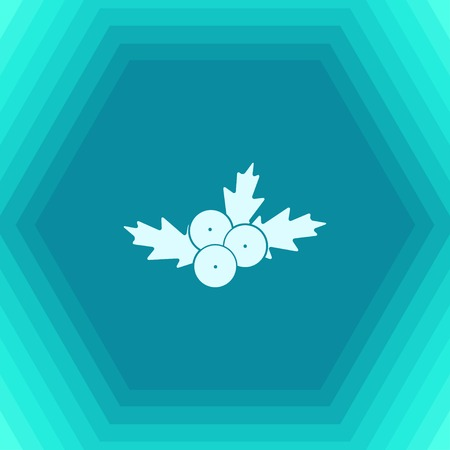 Vector christmas icon. New year illustration. flat Holly berry on hexagonal background