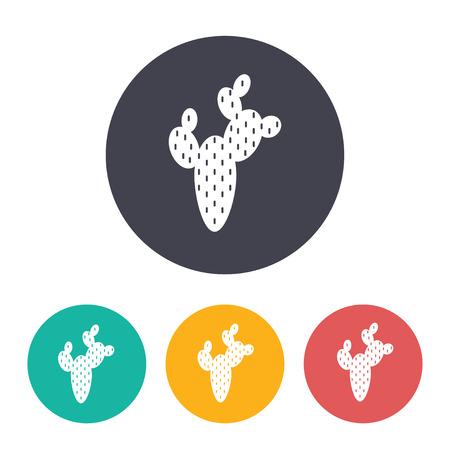 Desert cactus illustration. Plants vector icon