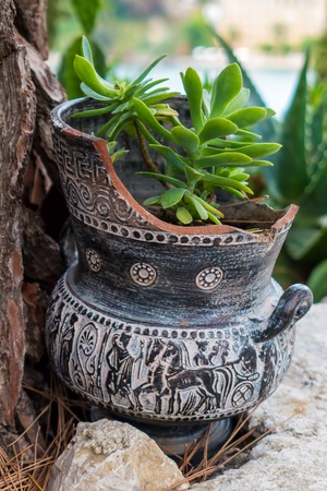 floriculture: Flower pot by the the Mediterranean Sea in Greece Stock Photo