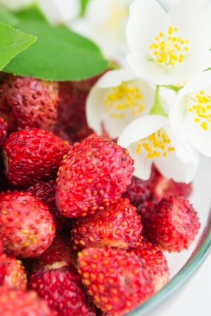 Wild strawberry in a plate with jasmine photo