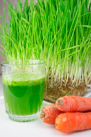 Green Organic Wheat Grass Shot ready to drink Foto de archivo