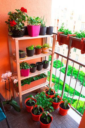 Small herb and flower garden built on small balcony garden Reklamní fotografie