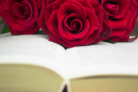 The open book and red roses. Close up Foto de archivo