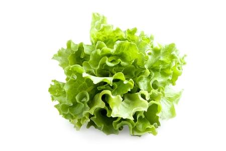 Lettuces leaves Reklamní fotografie