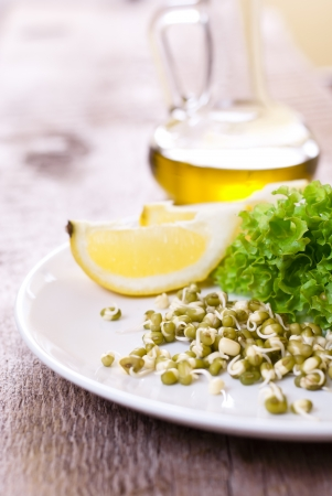 germinating seed mung with lemon and lettuce photo