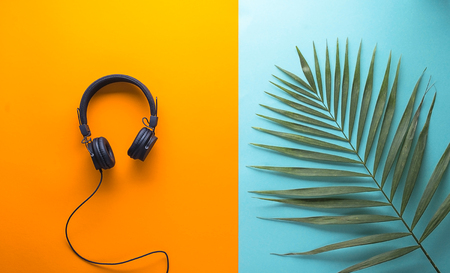 concept of for man on vacation with music and palm leaf on orange and blue background