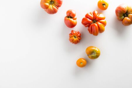 organic red tomatoes on white background with copy space