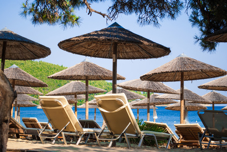skiathos: Tropical beach in Skiathos Island, Greece