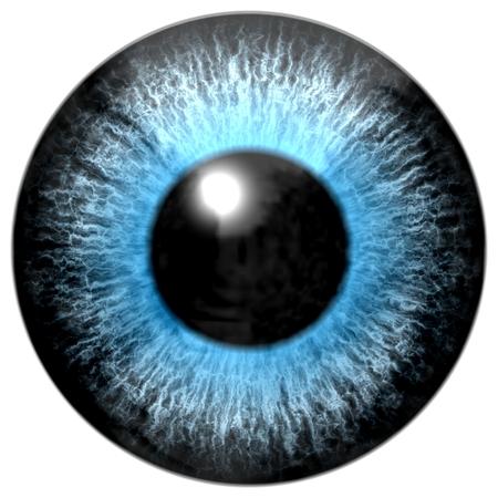 blue eye: Blue eye Stock Photo