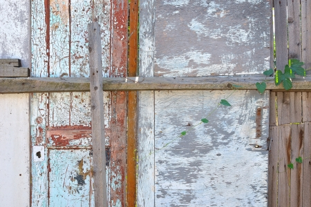 old wooden fence and a door photo