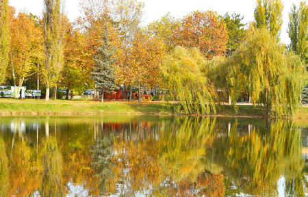 colourful autumn Stock Photo