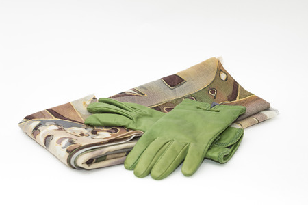 leather green gloves and a multi-colored scarf