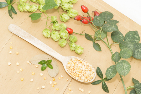 peas in a wooden spoon, hops and rosehips Standard-Bild - 109034753