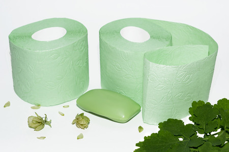 soft green toilet paper and soap Stock Photo