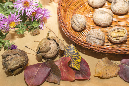 dry autumn leaves and basket with walnuts on a wooden surface close-up