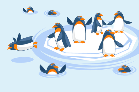 A flock of penguins play on an ice floe, dive and swim in the water