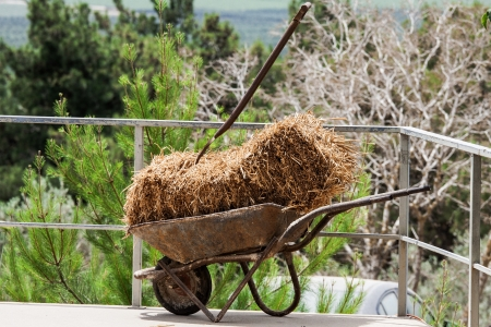 decaying: Fork,  hay and wheelbarrow in the barn Stock Photo