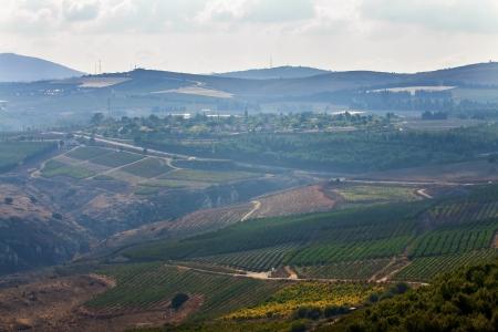 israel farming: rural landscape in Israel