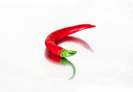 Red chilli pepper on white photo