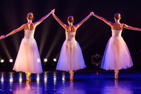 concert of the School of Ballet