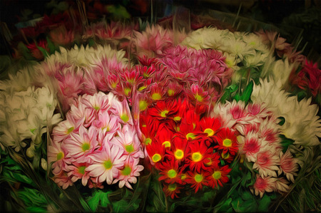 colorful variety of flowers sold in the market  drawing filter