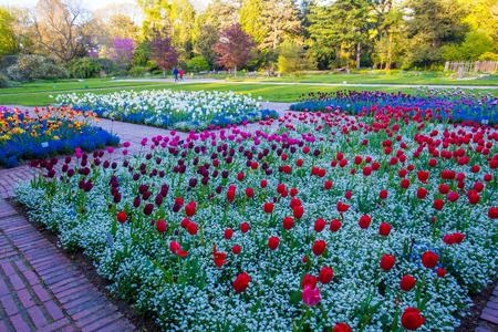 Cologne Park Flora Stock Photo