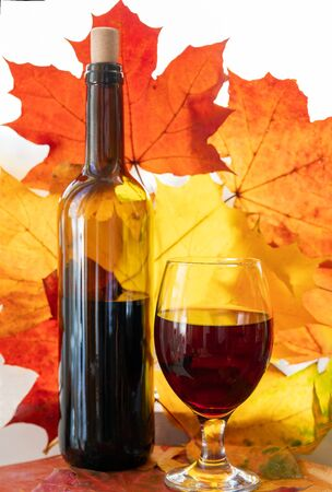 a GLASS OF  RED WINE  AND BOTTLE .  Orange maple leaves background- autumn!   Reasonable extent reduces the risk of developing heart failure and such a serious disease of the cardiovascular system, such as myocardial infarction, increases hemoglobin and affects the quality of blood .
