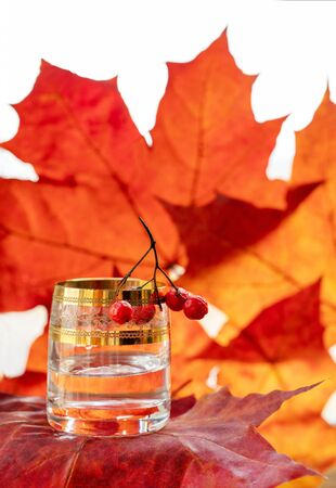 A   glass of  vodka.  Background  : orange autumn -  maple leaves. Several rowan berries on a  glass. Swedish  or finnish or russian  vodka.